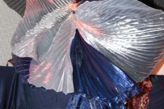 7. März 2010 Orientalische Tanzshow